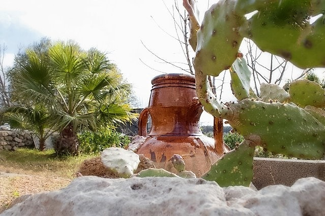 Ferienhaus Casa vacanze a Castrignano del Capo nel Salento in tipica costruzione Salentina a pochi km (2203937), Castrignano del Capo, Lecce, Apulien, Italien, Bild 35